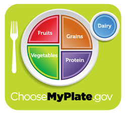 New My Plate Nutritional Guide
